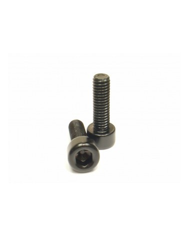 Alloy Bottlecage screws M5x16, black, 2 pieces