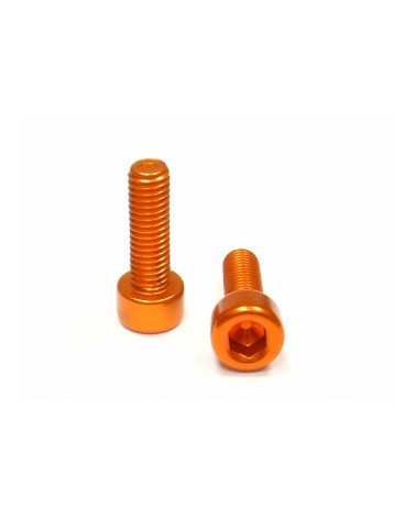 Alloy Bottlecage screws M5x16, gold, 2 pieces