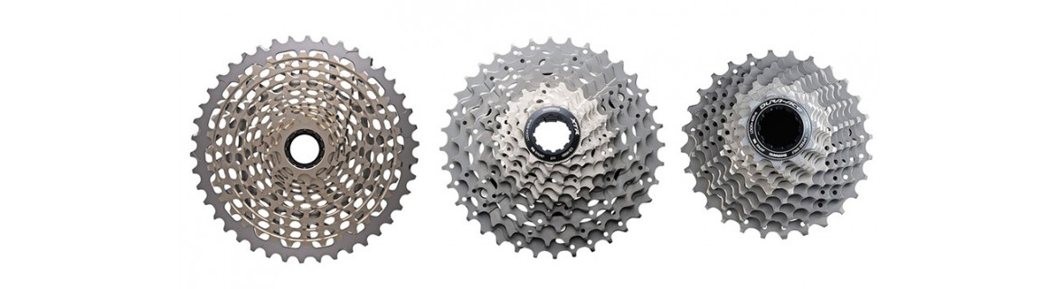 Cogs and Cassettes